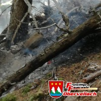 Waldbrand Roglgraben